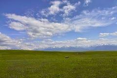 Scenery of Kalajun grassland Royalty Free Stock Photography