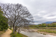 Scenery of Kamo River Stock Images