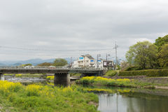 Scenery of Kamogawa with yellow flowers and bridge Stock Images