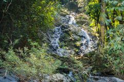 Scenery in Khao Sok National Park in Thailand. Khao Sok National Park the rain jungle forest in Surat Thani province Royalty Free Stock Photos