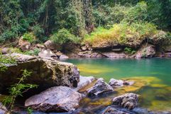 Scenery in Khao Sok National Park in Thailand. Khao Sok National Park the rain jungle forest in Surat Thani province Royalty Free Stock Photo