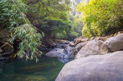 Scenery in Khao Sok National Park in Thailand. Khao Sok National Park the rain jungle forest in Surat Thani province Royalty Free Stock Images