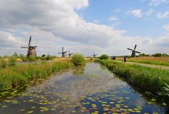 Scenery in Kinderdijk. Kinderdijk, The Netherlands - May 3, 2014. View of a canal in Kinderdijk, with windmills, water lilies and people Royalty Free Stock Image