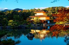 Scenery of Kinkaku-ji, a famous Zen Buddhist temple in Kyoto Japan, with view of Golden Pavilion glittering under blue clear sky. & beautiful reflections on Royalty Free Stock Images
