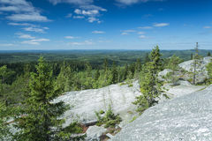 Scenery from Koli national park Stock Photography