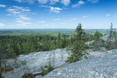 Scenery from Koli national park Royalty Free Stock Photo