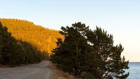 Scenery of Lake Baikal shore. Сountry road, trees, mountain, sunset. Time lapse stock video footage