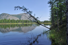 Scenery of the lake and reflections of the mountains Stock Photo