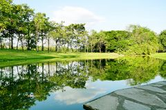Scenery of landscape park with reflection on lake. Scenery of landscape park many green tree and blue sky with reflection on lake in sunny day royalty free stock images