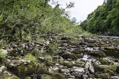 Scenery of linn of tummel from the trail. Scenery of the river tummel and the Linn of Tummel woodland from the trail on the river coast Stock Photo