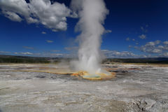 The scenery of Lower Geyser Basin in Yellowstone Stock Images