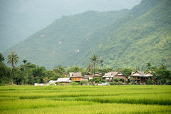 Scenery of Mai Chau in Vietnam Royalty Free Stock Images