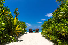 Scenery in Maldives Royalty Free Stock Images