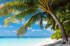 Scenery in Maldives Stock Images