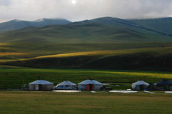 Scenery in Mongolia Stock Images