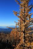 Scenery from Mount Fuji Japan. Looking towards Minami Alps Japan during autumn Royalty Free Stock Image