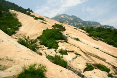 Scenery of Mount Taishan. The summer Scenery of Mount Taishan,ShanDong,China Royalty Free Stock Image