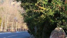 Scenery of the mountain village. In the autumn scenery of the mountain village.A road goes through the valley stock video
