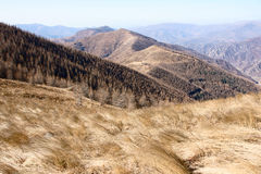 Scenery of Mt.Wutaishan Stock Images