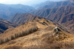 Scenery of Mt.Wutaishan Stock Image
