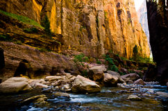 Scenery from The Narrows hike at Zion National Park. Royalty Free Stock Photos