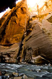 Scenery from The Narrows hike at Zion National Park. Stock Images