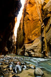 Scenery from The Narrows hike at Zion National Park. Stock Image