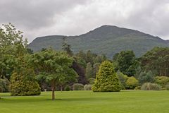Scenery near Muckross House Stock Photos