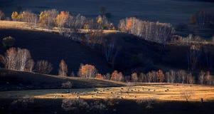 Scenery of Northern China Stock Image