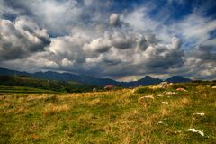 Scenery with the ocean shore in Asturias, Spain Royalty Free Stock Photo