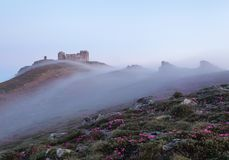 The scenery with the old observatory that is on the mountain covered with the light fog. Lawn with the rocks and pink rhododendron royalty free stock photos