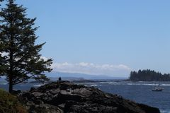 Scenery of the the Pacific Ocean near Ucluelet, Canada Royalty Free Stock Photo
