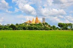 Scenery of Pagoda Stock Image