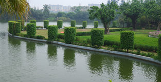 Scenery of pond Stock Images