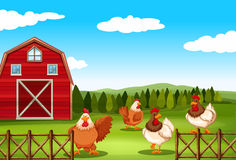 Scenery. Poster of a barn with chickens behind the fence Stock Images