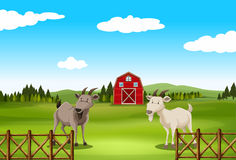 Scenery. Poster of a farm with barn and goat Royalty Free Stock Photos