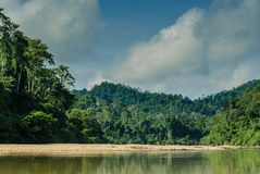 Scenery from the river Sungai tembeling Royalty Free Stock Images