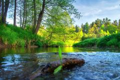 Scenery riverside. Summer river. Green nature landscape. Beautiful view on river bank stock photo