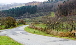 Scenery with road and fruit trees without leaves and some apples here and there. Before a plantation with black protective nets, Kukmirn, Austria stock photos