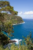 Scenery from Road to Hana. The famous road to Hana in Maui, Hawaii royalty free stock photos