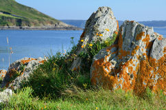 Brittany Coast,Locquemeau,France Stock Photography
