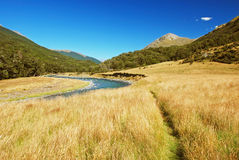 Scenery from Routeburn track Stock Images