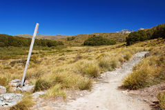 Scenery from Routeburn track Royalty Free Stock Photos