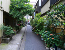 Scenery of a small street in the back street of Japan Tokyo. Scenery of a small street surrounded by green in the back street of Japan Tokyo stock photos