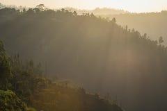 Scenery of sunrise at Pinggan Village, Kintamani, Bali. Royalty Free Stock Photo