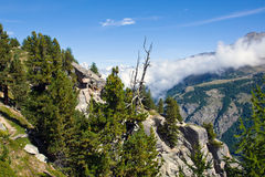 Scenery in the swiss alps Stock Images
