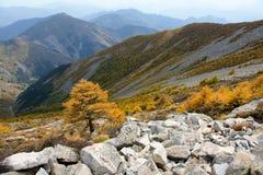 Scenery of Taibai Mountain. The autumnal Scenery of Taibai Mountain,Shaanxi,China Stock Images