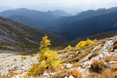 Scenery of Taibai Mountain. The autumnal Scenery of Taibai Mountain,Shaanxi,China Stock Photos
