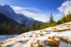 Scenery of Tatra mountains at winter. Poland Stock Image