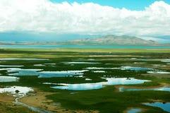 Scenery in Tibet Stock Photography